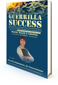 Guerilla Success cover