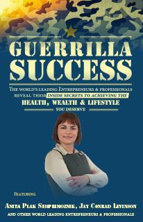Guerilla Success cover